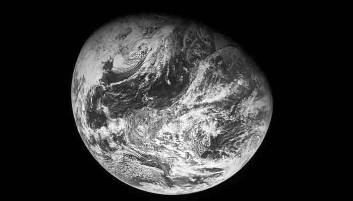 Intervista NewTuscia – La Terra Siamo Noi