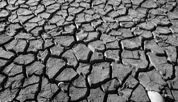 Il Clima Che Cambia Colpisce L'agricoltura: La Siccità Ci Costa Un Miliardo Di Euro