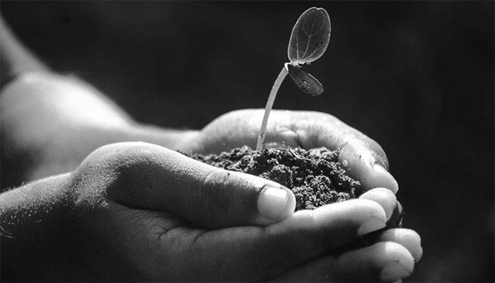 L'Italia è Indietro Sugli Obiettivi Di Sviluppo Sostenibile